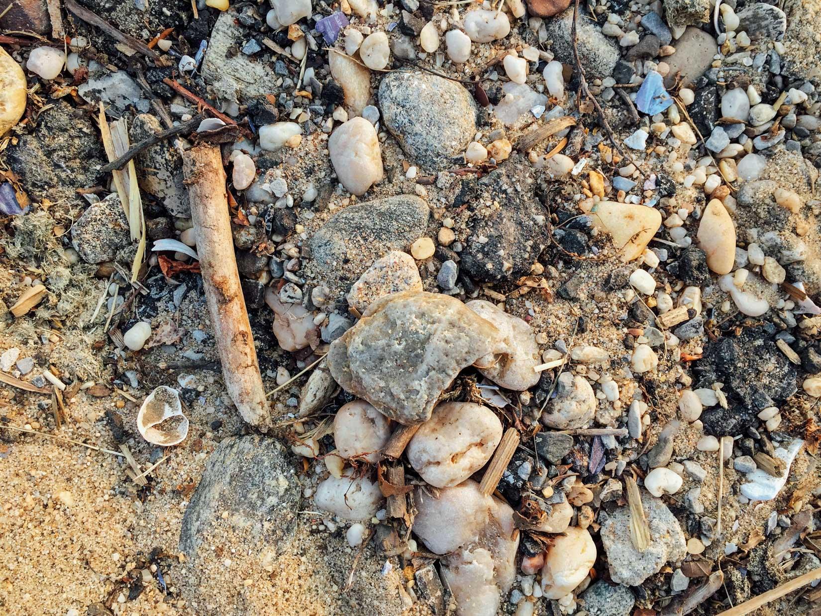 Shells and Rocks on Sand