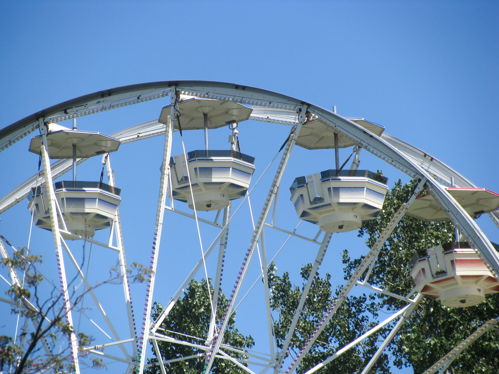 Ferris Wheel In Front of Tree