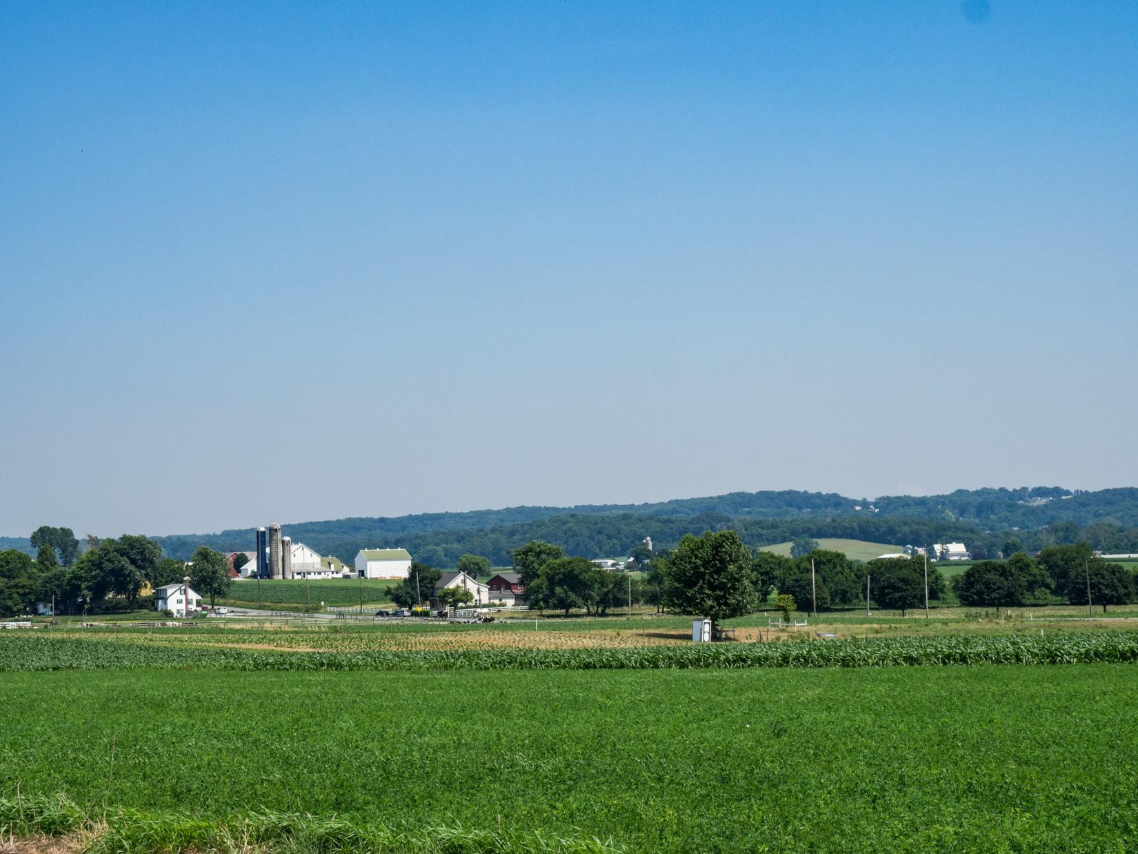Farm Under Blue Sky