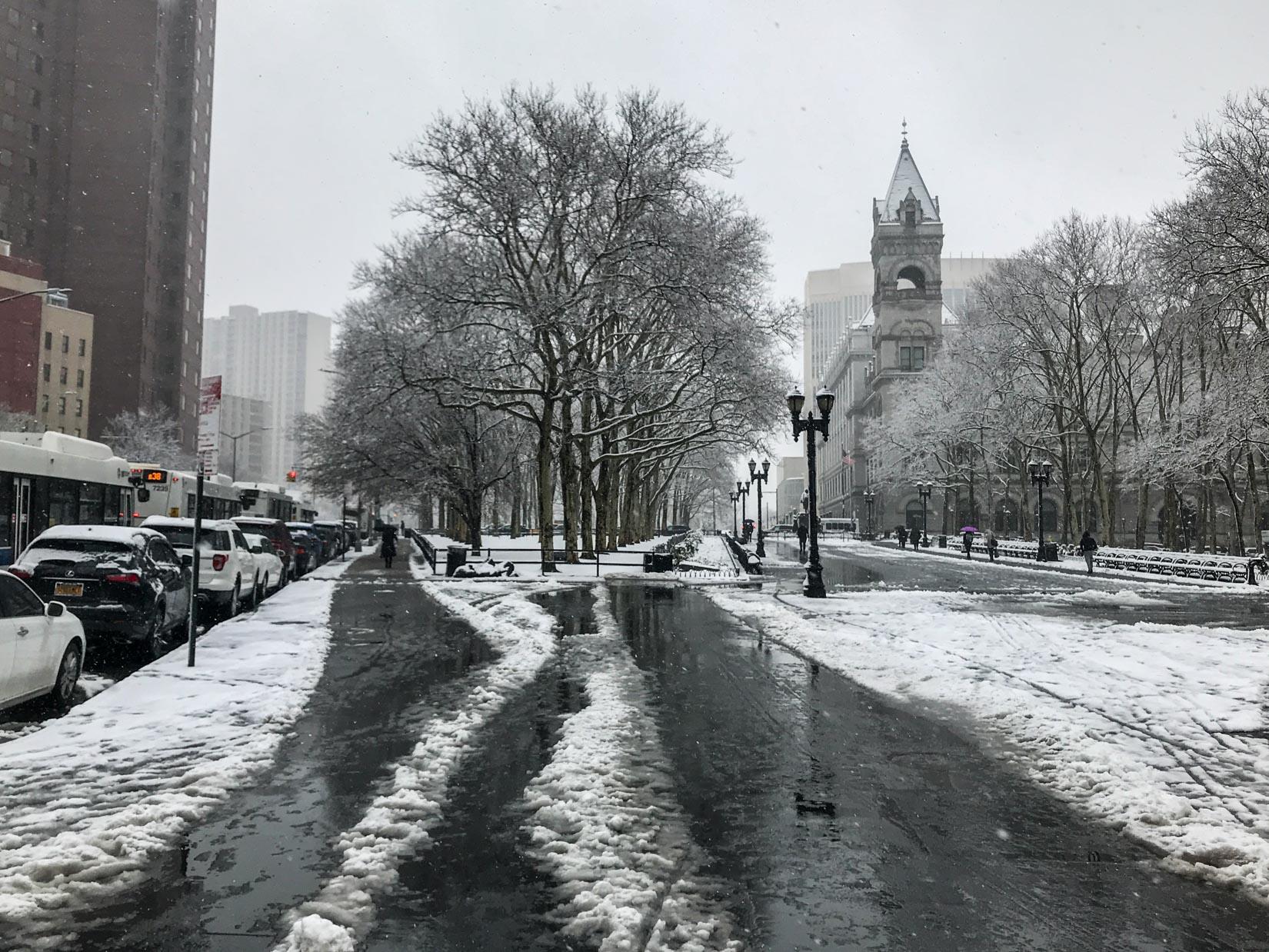 Winter in Brooklyn