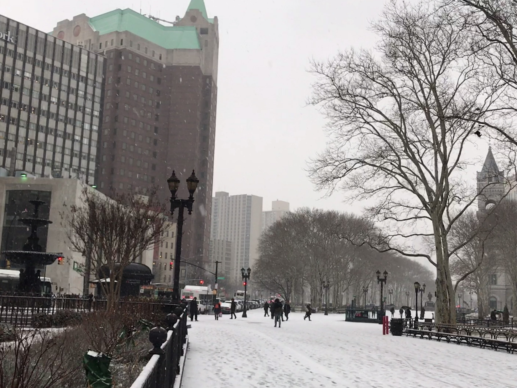 Snow Falling in Brooklyn